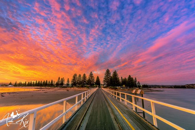 Victor Harbor causeway by nicolerix - Promenades And Boardwalks Photo Contest