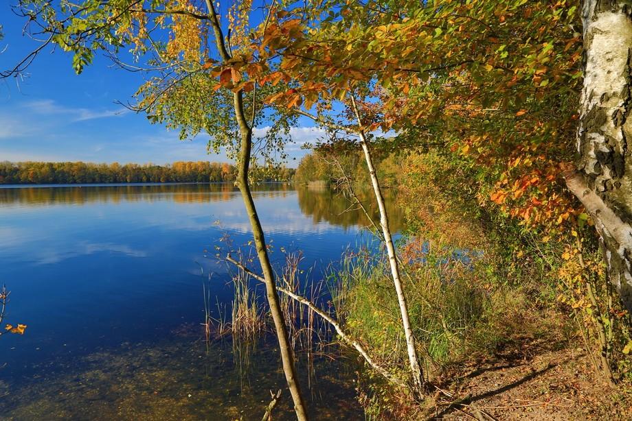 Herbst -2016-10-30-02419