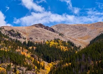 Fall Colors in Colorado 9