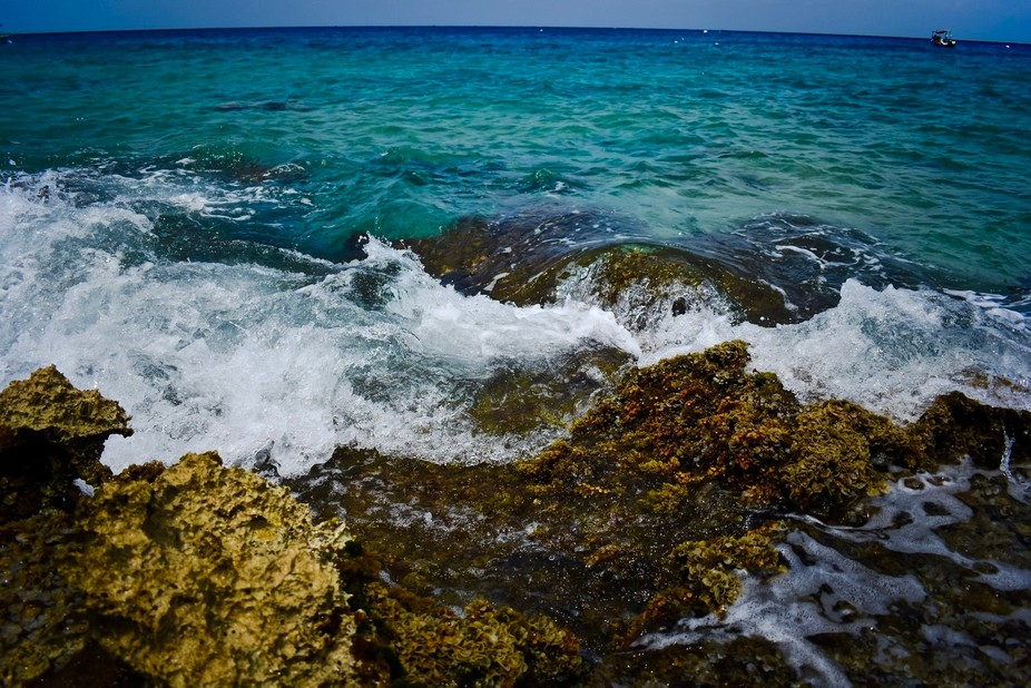 Taken on the beaches north of the Cozumel Cruise Port