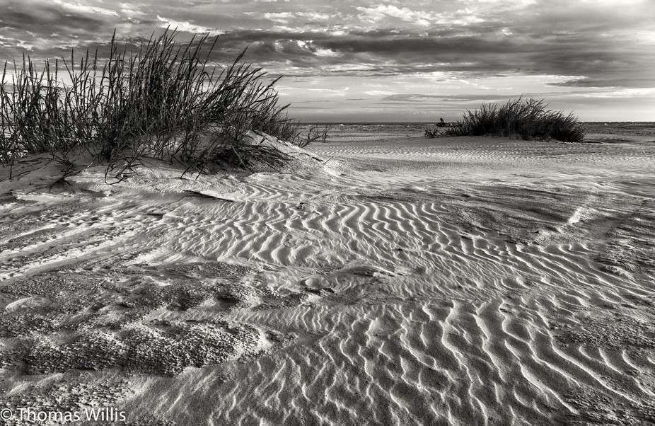 Dawn with wind blown sand and small dunes