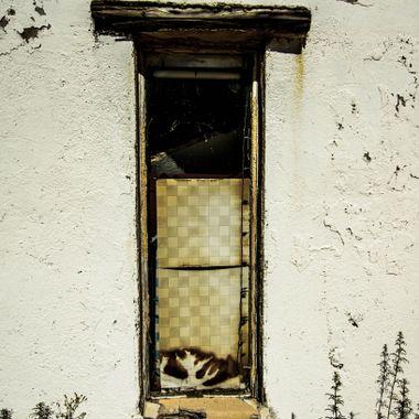Window - Yarnell, AZ
