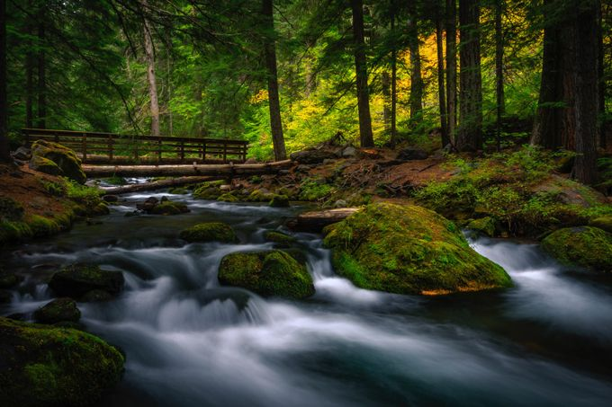 Bridge to Autumn by jacobdurrent - Streams In Nature Photo Contest