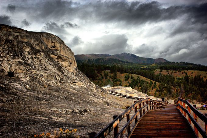 ys77 by BloomingReflections - Promenades And Boardwalks Photo Contest