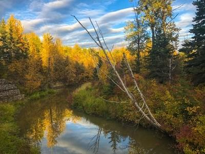 De kalender zegt herfst en het landschap ook. door Theo-Herbots-Fotograaf