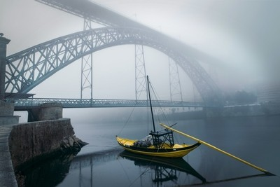 Fog & alone