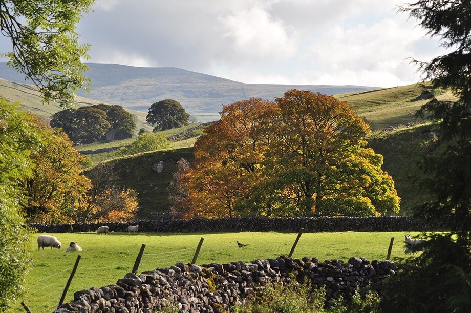 The Yorkshire Dales in October