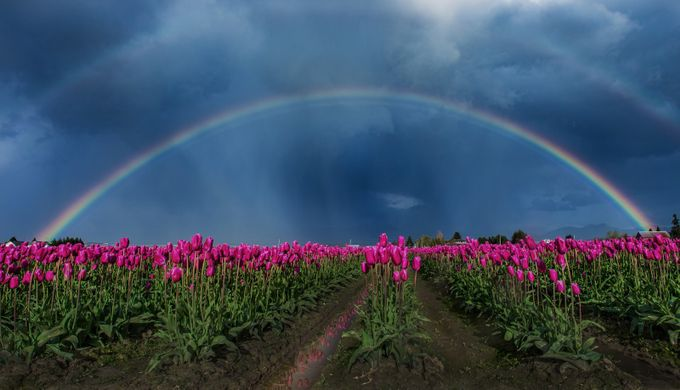 by maraleite - Rainbows Overhead Photo Contest