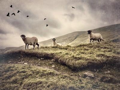 Cumbria Lake District