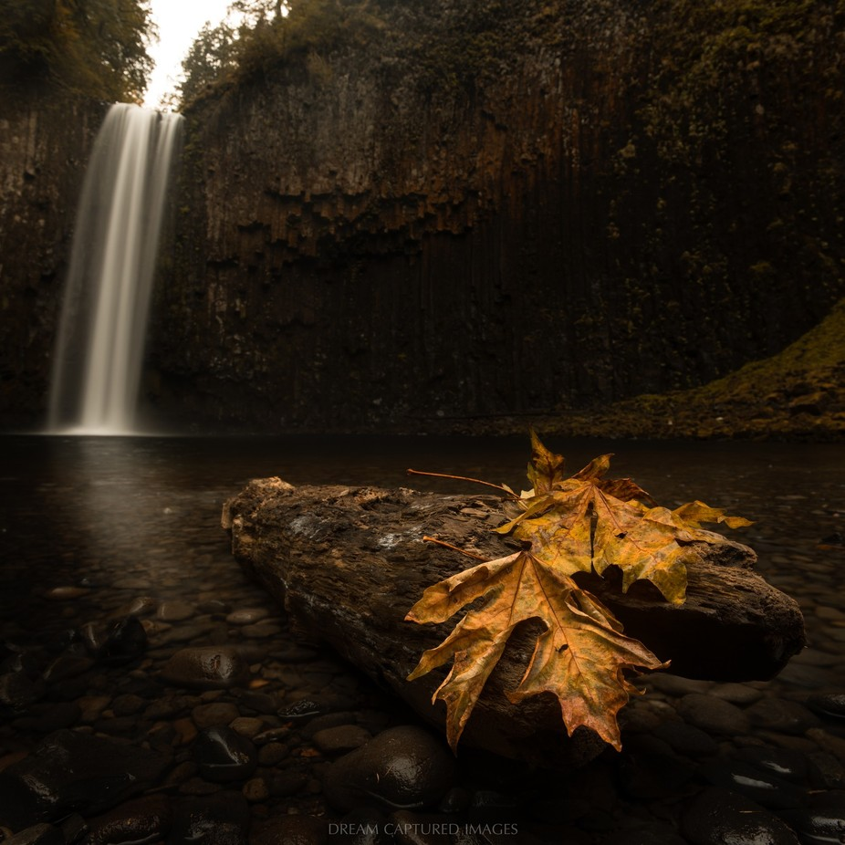Abiqua Falls Panorama by DreamCapturedImages - Fish Eye And Wide Angle Photo Contest