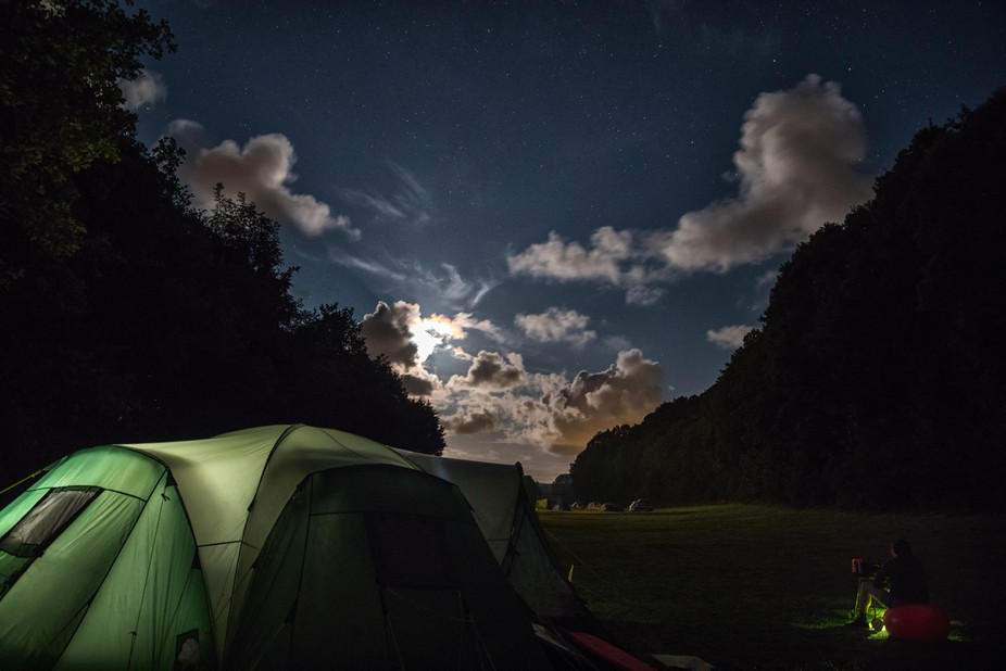 This is Magor Farm campsite next to Tehidy Country Park (the trees to the right are the edge of t...