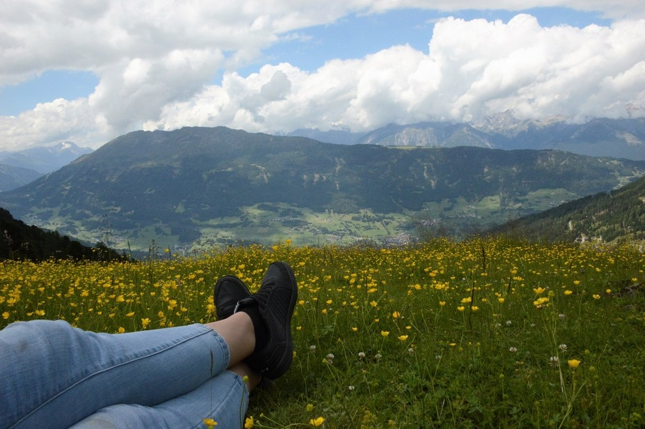 Chilling in the Alp meadows