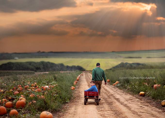 Pumpkin Picking by HamptonPhotography - Rural Vistas Photo Contest