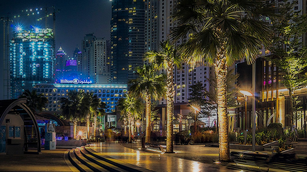 Palm tree alley on the sea front at Dubai Marina, UAE with lit up palms along the path.