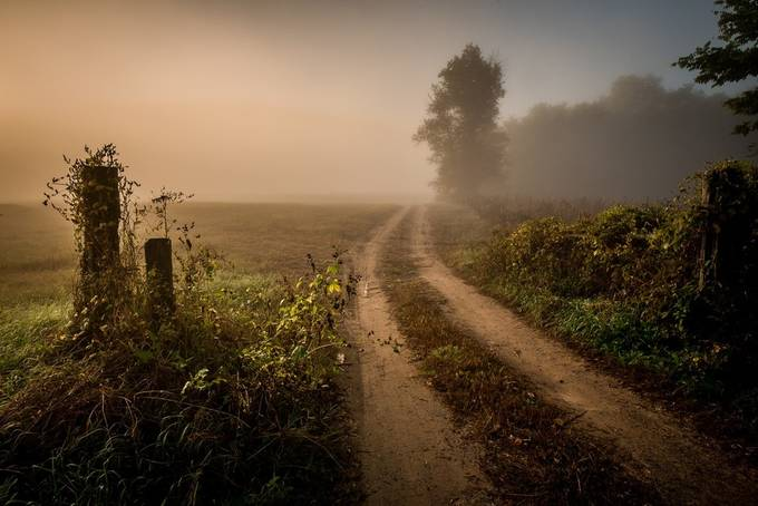 ...morning fog... by jaroslavbil - A Road Trip Photo Contest