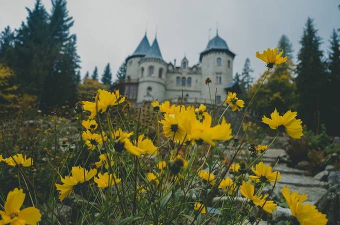 Flowers in front of the castle by acchiappasogni - Fall 2017 Photo Contest
