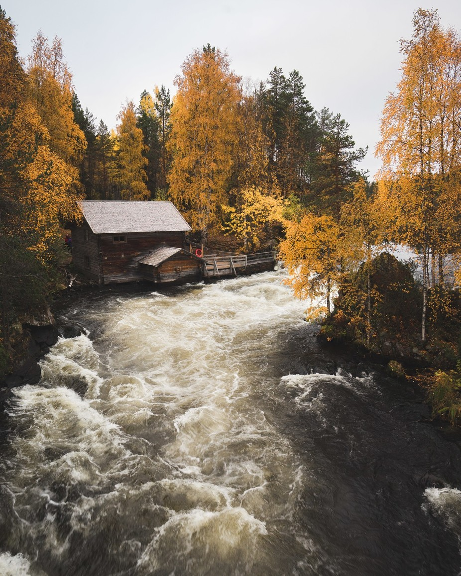 Autumn in Kuusamo by niiloi - Image Of The Month Photo Contest Vol 27