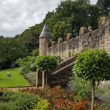 I took this photo when we went on a trip to Ireland, in September 2017. This photo was taken at the gardens of Belfast Castle.