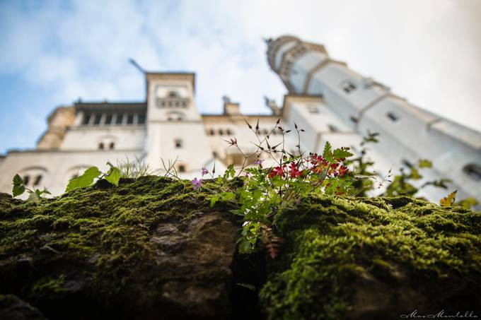 Down before the king by MaxMontella - Tall Structures Photo Contest