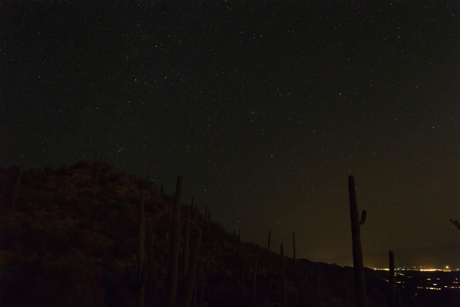 the desert by night