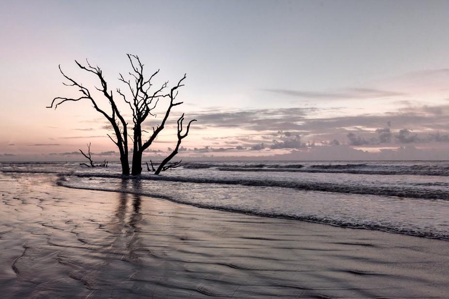 Sunrise last week on Bulls Island.