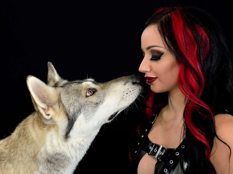 My two top favourite photographic subjects, Dani Divine and Watermill wolves lupines, coming toge...