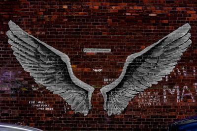 Liver Wings Art