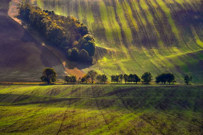 Green Moravia by jansieminski - Creative Compositions Photo Contest Vol5