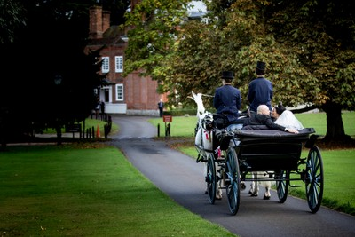 Horse and carriage at a recent wedding shoot