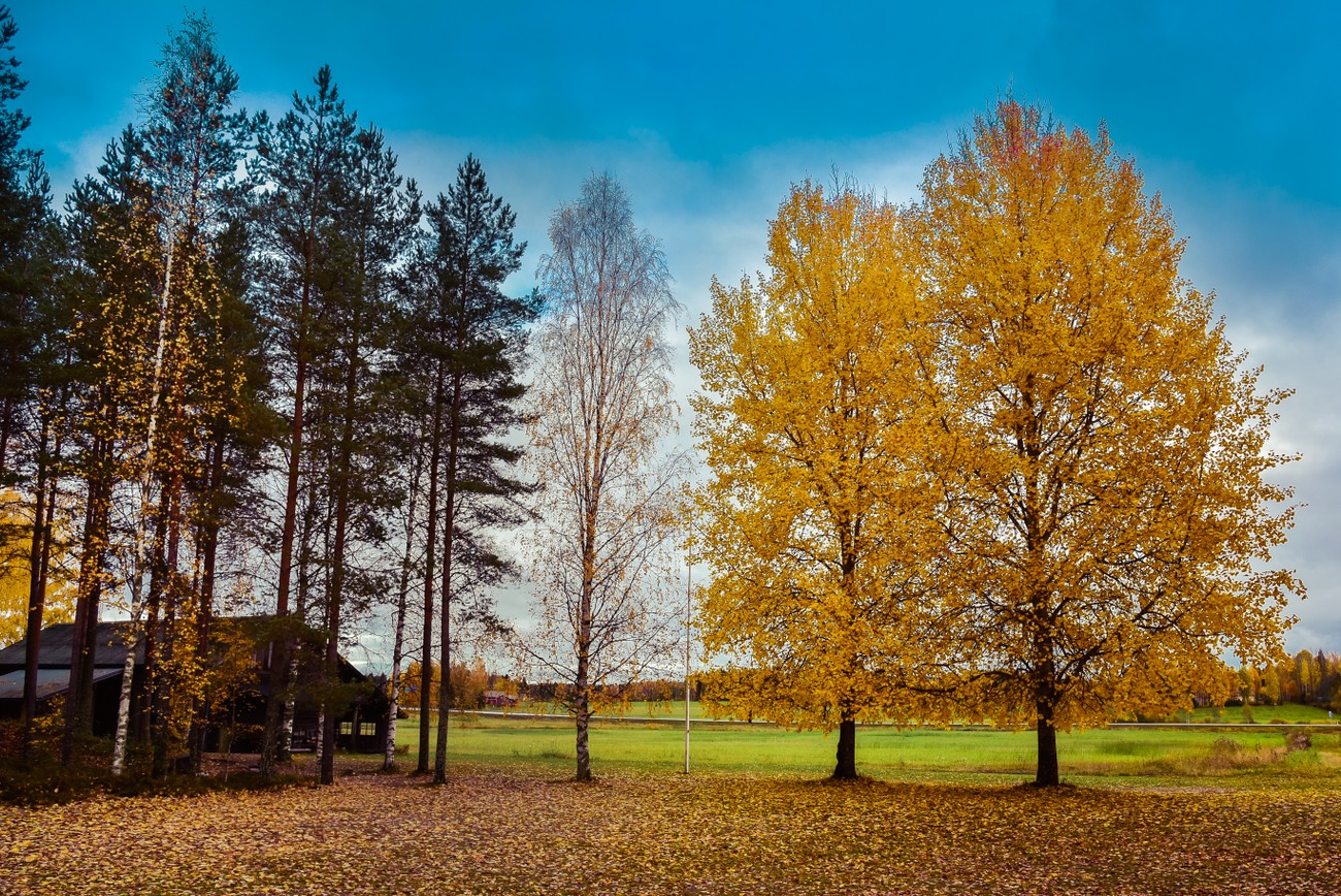 captured somewhere in Finland