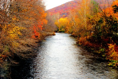 Fall along the Maidencreek