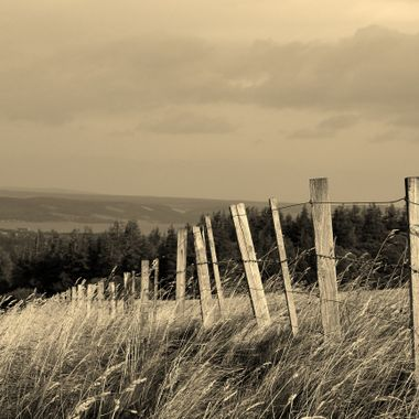 The Fenceline drops away to Inversnecky