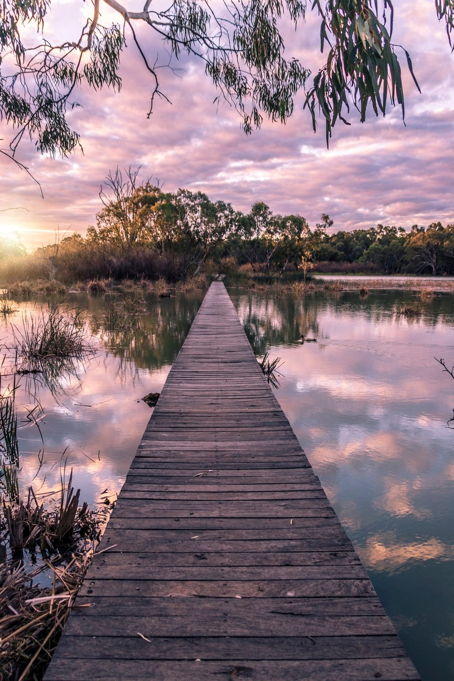 Boardwalk to island by thephotographyfriend - Promenades And Boardwalks Photo Contest