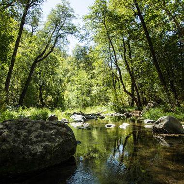 Oak Creek - Oak Creek Canyon, AZ.