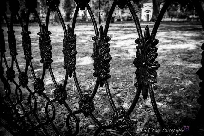 Fences on walk about