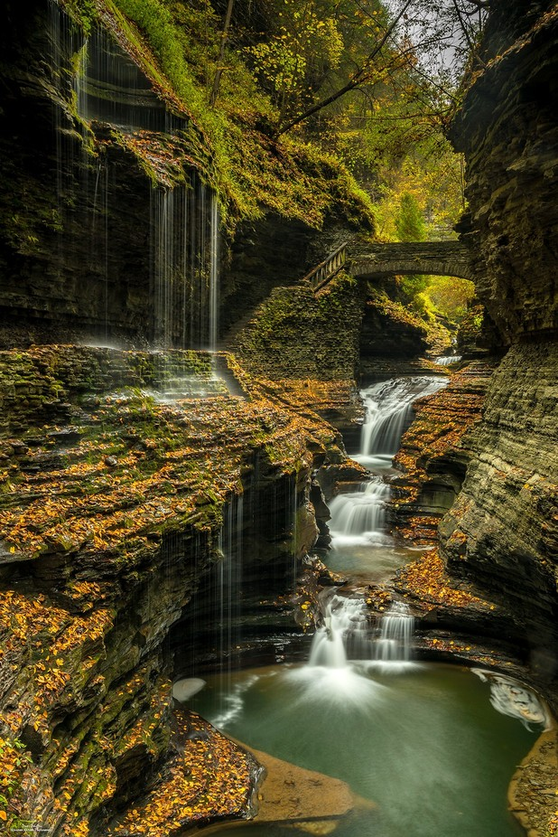 Cascade At Rainbow Falls by jamesjohnston_3471 - Monthly Pro Vol 37 Photo Contest