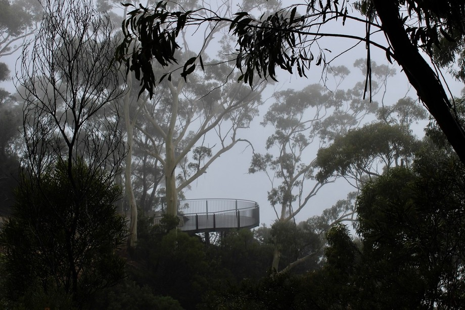 Misty day in the inner ranges of Blue Mountains