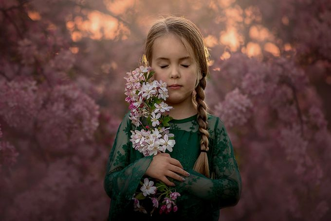 Let your dreams blossom by BrionyWilliams - Everything Bokeh Photo Contest