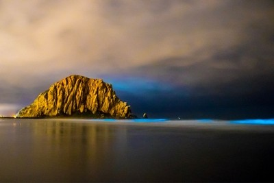 Bioluminescent phytoplankton light up the waves in Morro Bay, CA
