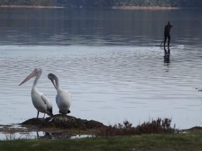 SUP on the lake