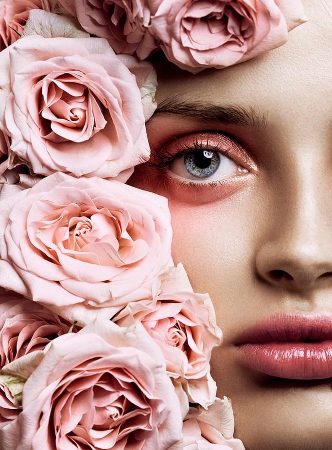 Rose by NinaMasic - Pink Photo Contest
