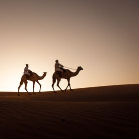This image was taken in Oman in the Wahiba desert.  Local Bedouins there traditional travel throughout the region following the grazing route for...