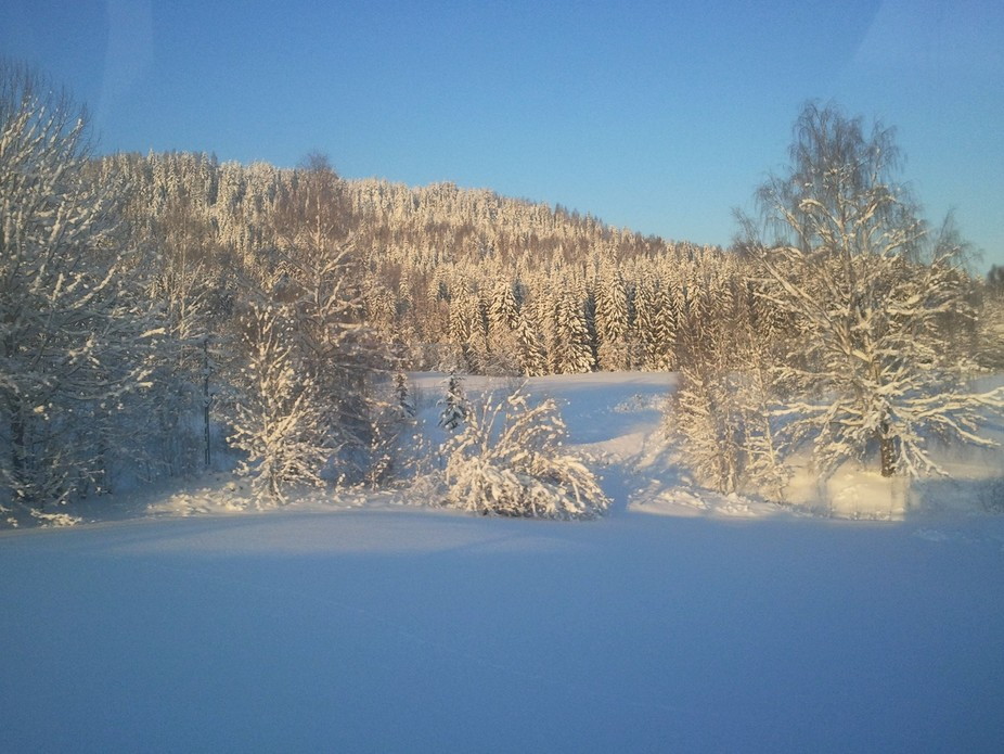 On my way to the city I found this lovely winter scene beside the local road. Sollefteå kommun.