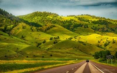 Green Hills of Montana