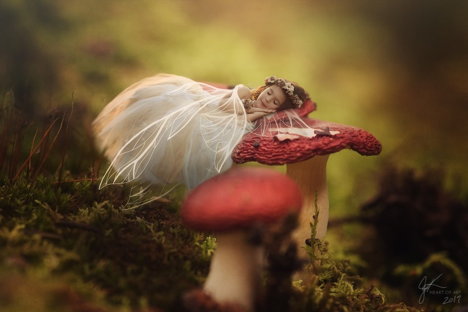 Took the shot of the mushrooms while I was in Alaska, then got to shoot this beautiful princess t...