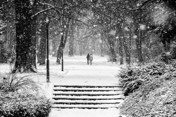Walking in a Winter Wonderland by frankseltmann - City Life In Black And White Photo Contest