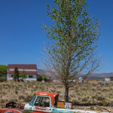 Driving route 66 in Arizona, found this truck doubling as a planter. The color of the truck, the tree, the building behind all caught my eye. Second life of a truck.