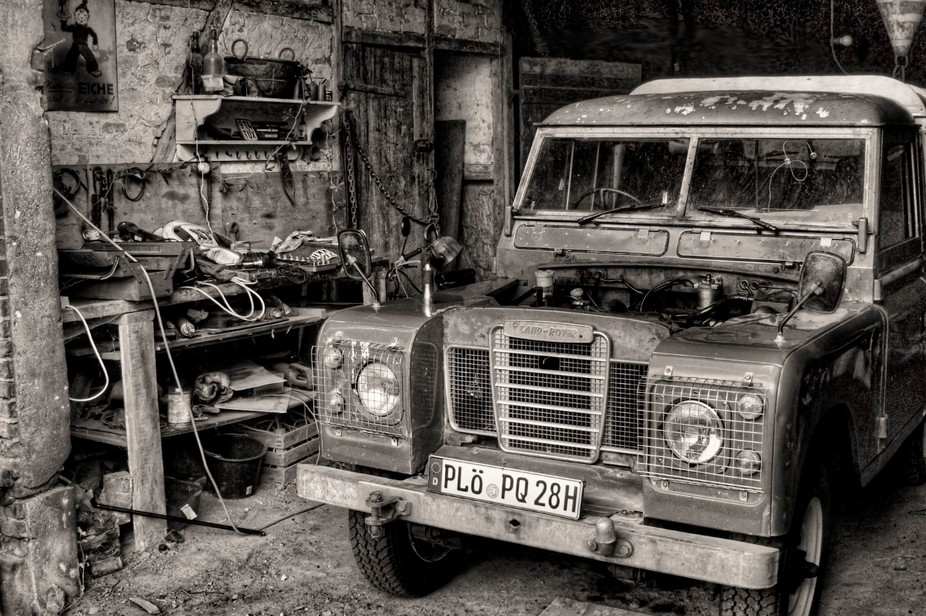 Old Landy in his natural biotope
