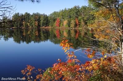 Somes Pond Reflection 4