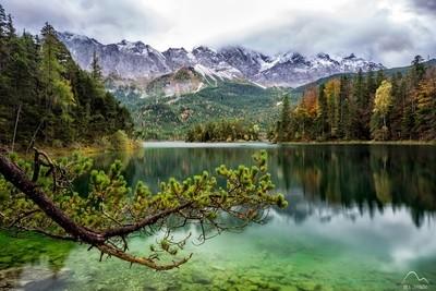 Emerald calmness.